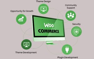 WooCommerce Development In Mississauga